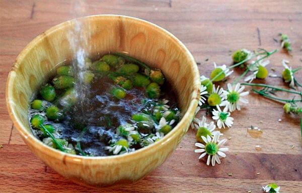 Отличие ромашкового отвара от чая заключается в том, что он именно варится, а не заваривается.