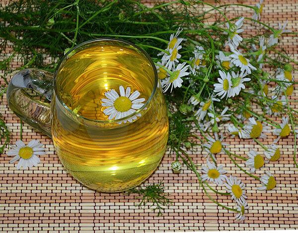 Хотя повлиять на причины простатита чай из ромашки не способен, оказать симптоматическое действие он может.