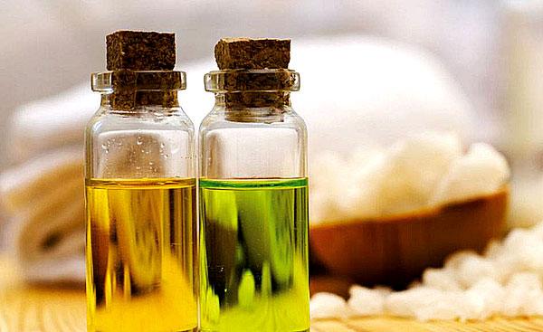 Свойства римской ромашки мало отличается от свойств ромашки аптечной.