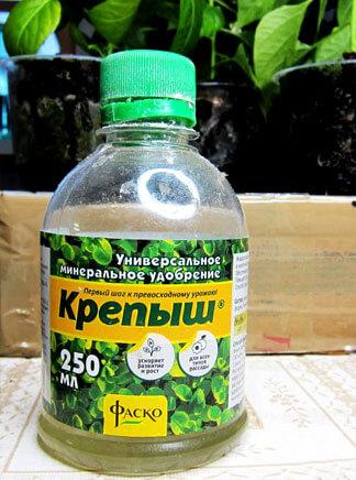 Достаточно помнить, что в диких условиях пиретрум произрастает в некоторых местностях, как сорняк.