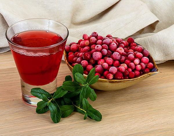 Можно ли употреблять брусничный сок при панкриатите