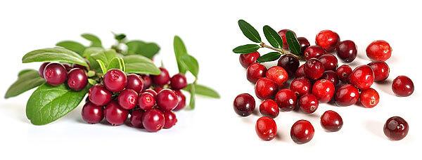 Видно, что ягоды различаются как по внешнего виду, так и по размерам.