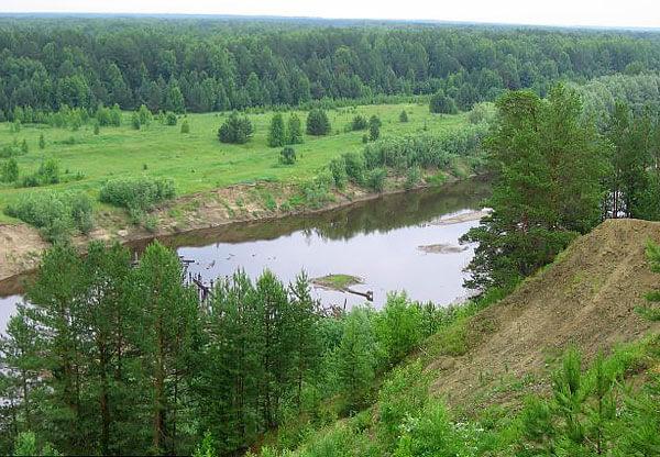 Именно здесь, в разреженных ельниках и борах, можно найти богатые брусникой поляны.