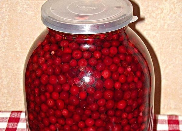 Аналогичным образом ягоды брусники сохраняют просто в воде.