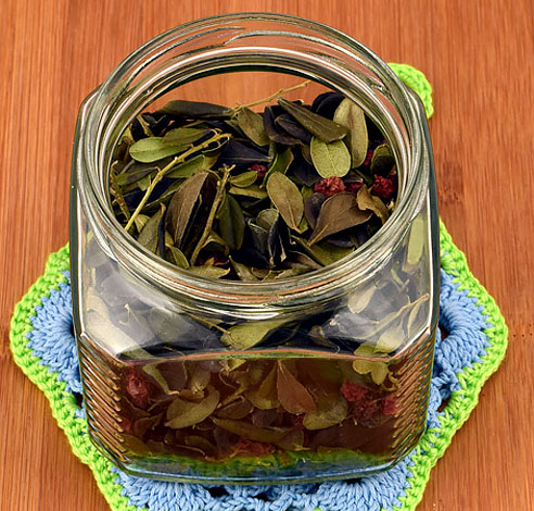 Чай из таких листьев оказывает мощное мочегонное действие.