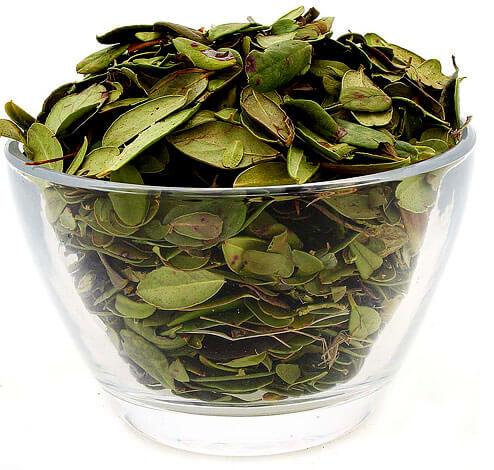 Главные эффекты, за счет которых листья считаются полезными - мочегонный и антибактериальный.