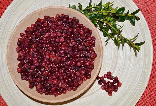 Брусничный же лист в качестве источника витаминов не годится.
