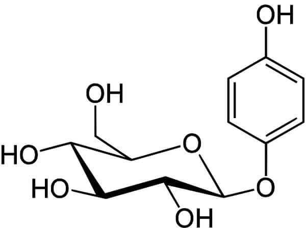 Фактически, в организме арбутин превращается в гидрохинон, чуть более простой по структуре, но именно и действующий на паренхиму почек.