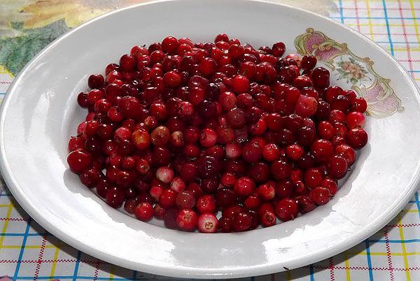 В частности, ягоды брусники нельзя есть при гастрите с повышенной кислотностью желудка или при пониженном артериальном давлении.
