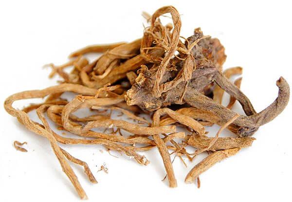 Именно в корневище и корнях накапливаются все вещества, оказывающие при применении валерианы лечебное действие.