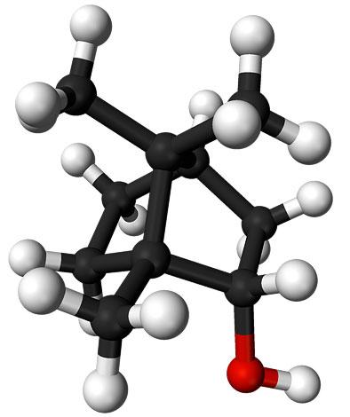 """Это вещество также известно под названием """"борнейская камфора"""""""