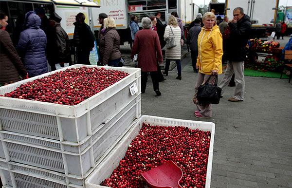 В сезон ягоды относительно недороги и для закруток их можно покупать в больших количествах.