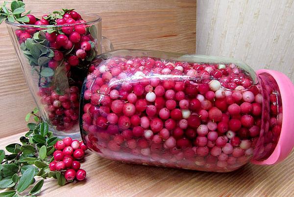 За счет большого количества бензойной кислоты брусничные ягоды надежно защищены от поражения бактериями и плесенью.