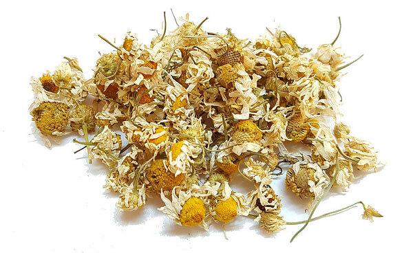 Именно в желтых трубчатых цветках таких соцветий содержится наибольшее количество полезных веществ.