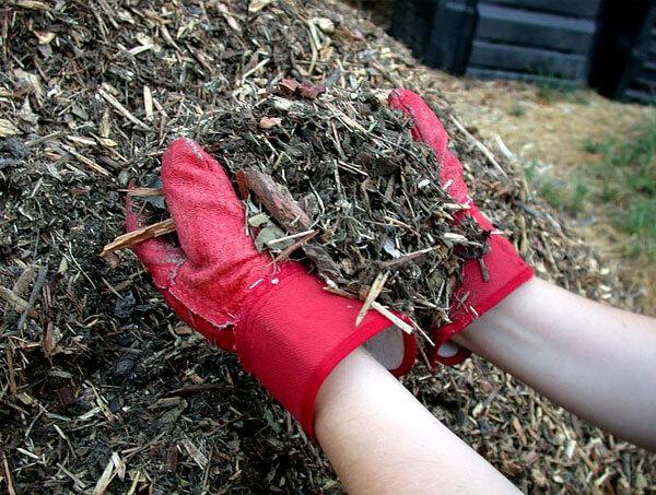 Такая мульча полезна и как легкое удобрение, поскольку содержит большое количество органических веществ.