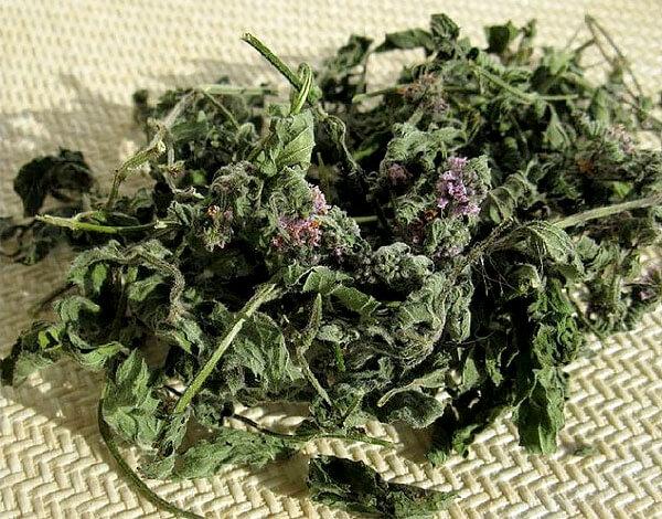 Мята не только разнообразит полезные свойства препарата, но и придает ему характерный вкус.