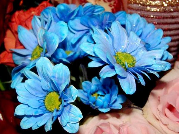 """Голубые и синие - одни из самых """"неестественных"""" цветов."""