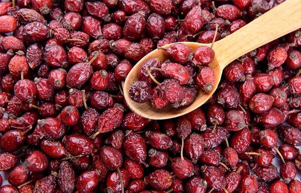 В народной медицине плоды шиповника используются в наибольшей мере в качестве иммуномодулятора.