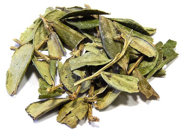 Лист брусники при заболеваниях мочевыводящих путей применяется в основном в качестве более доступной альтернативы листу толокнянки.