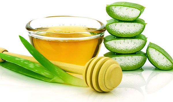 Мед - идеальная питательная среда для бактерий, с которыми иногда борются с помощью алоэ.