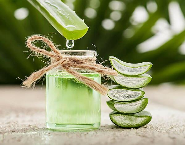 С помощью средств на основе алоэ можно быстро устранять зуд и раздражения кожи.